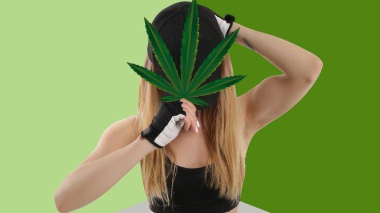 L'UFC autorise le cannabis médical pour ses sportifs professionnels