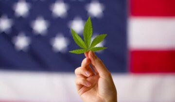 Près de 70% des docteurs américains sont favorables au cannabis médical