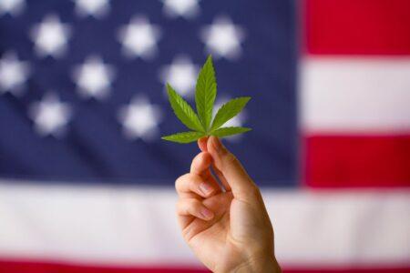 docteur cannabis médical